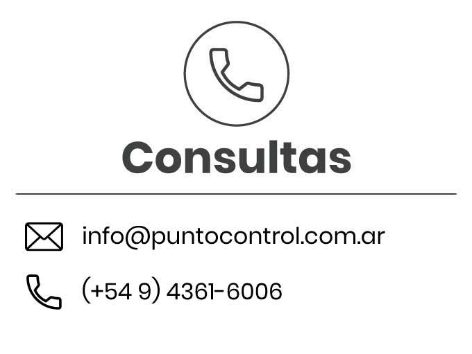 Consultas Punto Control